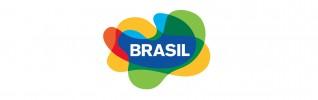 Brasil LOGO Top